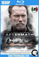 Descargar Aftermath (2017) 1080P Full HD Español Latino, Ingles Gratis