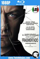 Descargar Fragmentado (2016) 1080P Full HD Español Latino, Inglés Gratis