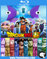 Ver Dragon Ball Super HD Online Capitulo 107 Sub Español Gratis