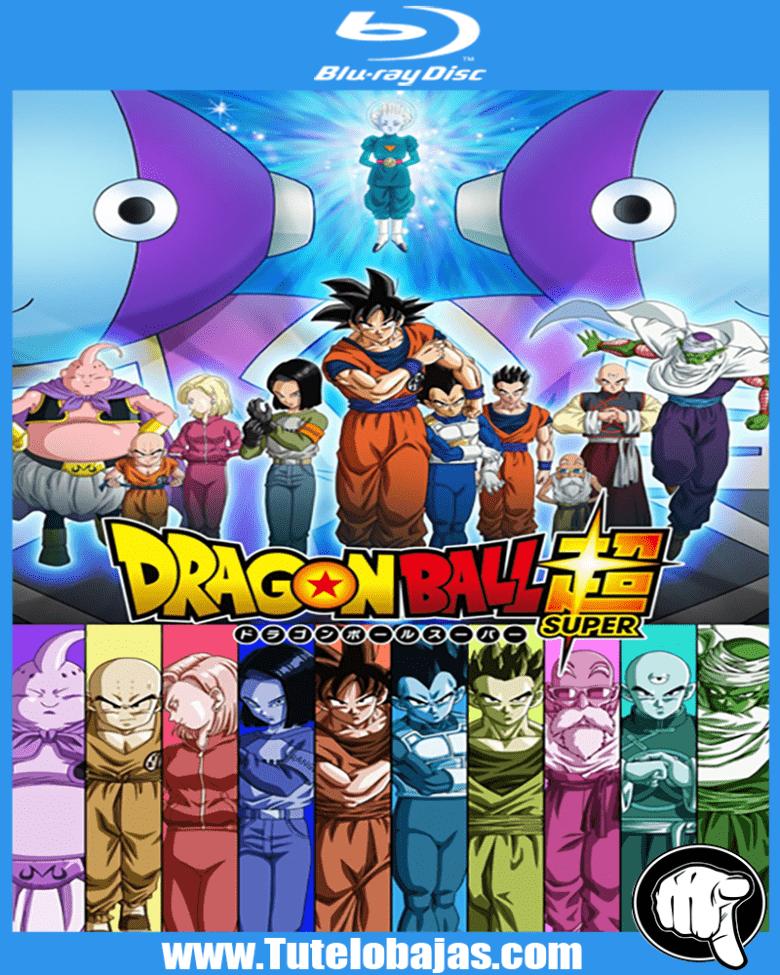 Ver Dragon Ball Super Online Capitulo 100 Sub Español Gratis