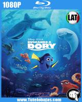 Descarga Buscando a Dory (2016) 1080p Full HD Español Latino, Inglés