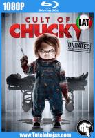 Descargar Cult of Chucky (2017) 1080P Full HD Español Latino, Inglés Gratis