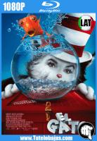 Descargar El Gato (2003) 1080P Full HD Español Latino, Inglés Gratis