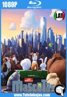 Descargar La vida secreta de tus mascotas (2016) 1080P Full HD Español Latino, Inglés Gratis