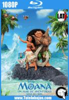Descargar Moana: Un mar de aventuras (2016) 1080P Full HD Español Latino, Inglés Gratis