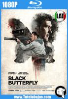 Descargar Black Butterfly (2017) 1080P Full HD Español Latino, Inglés Gratis