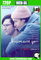 Descargar Irreplaceable You (2018) 720P HD WEB-DL Español Latino, Inglés Gratis