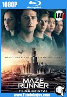 Descarga Maze Runner: la cura mortal (2018) 1080P Full HD Español Latino, Inglés Gratis